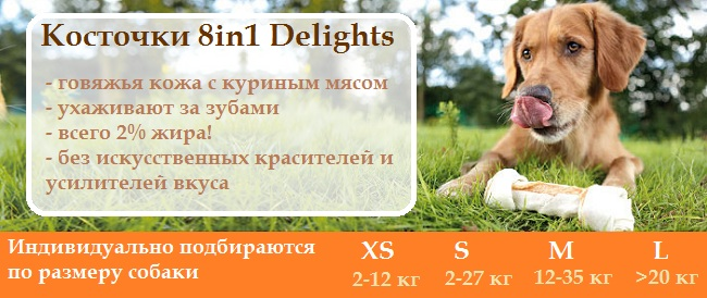 8in1 Delights