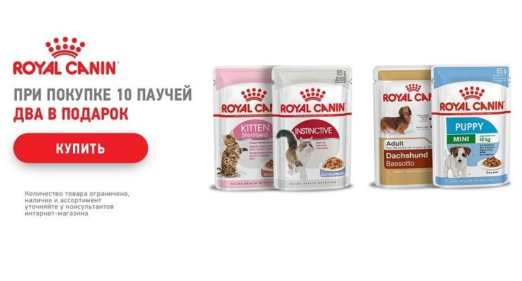 Дарим паучи Royal Canin!