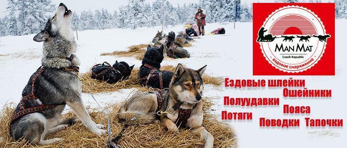 http://imgs2.mrgav.ru/main/manmat_new.jpg