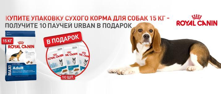 10 паучей Royal Canin в подарок!