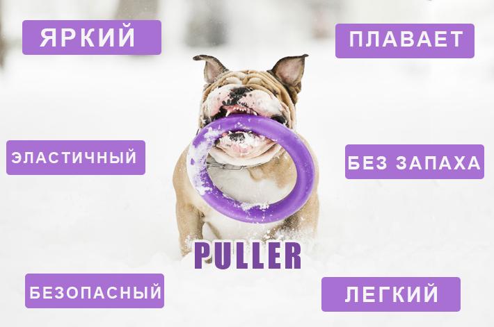 тренировочные снаряды для собак